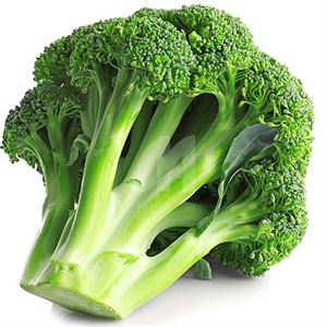 Broccoli Bunch Passover Shopmountainfruit Com Online Kosher Grocery Shopping And Home Delivery Service In Brooklyn